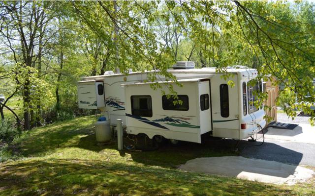 129 Moccasin Lane, Blairsville, GA 30512 (MLS #277673) :: RE/MAX Town & Country
