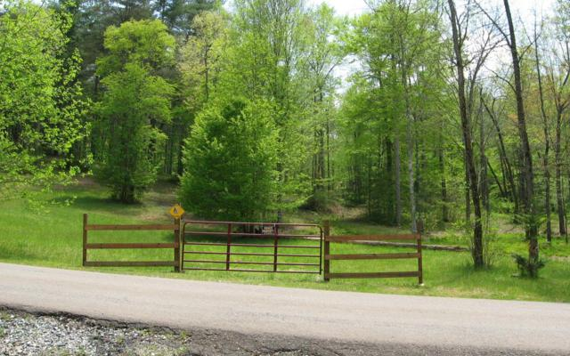 L18 Hidden Hills Dr., Morganton, GA 30560 (MLS #277686) :: RE/MAX Town & Country