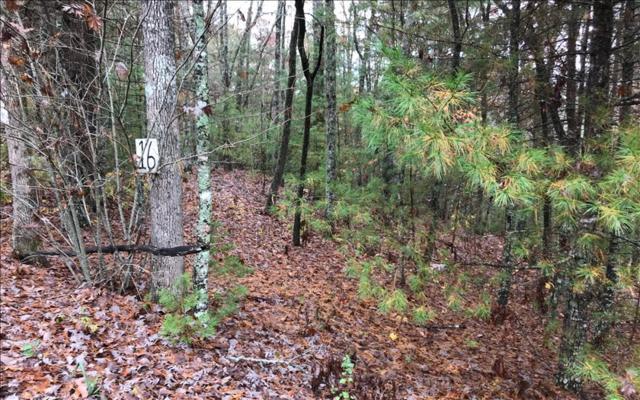 LT16 Whitetail Hollow, Morganton, GA 30560 (MLS #277689) :: RE/MAX Town & Country