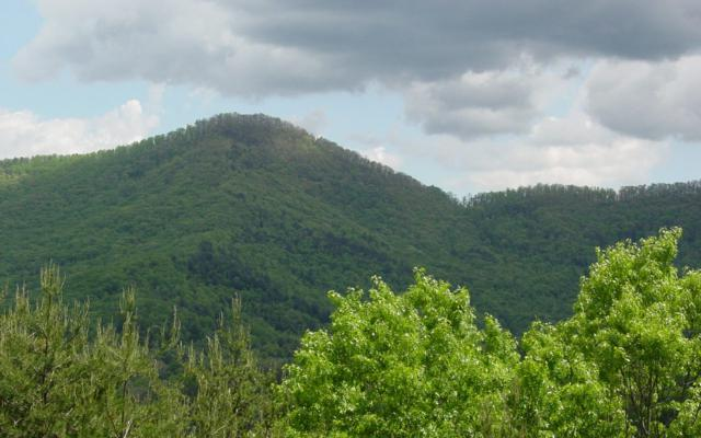 #19 Scenic Views, Hiawassee, GA 30546 (MLS #277783) :: RE/MAX Town & Country