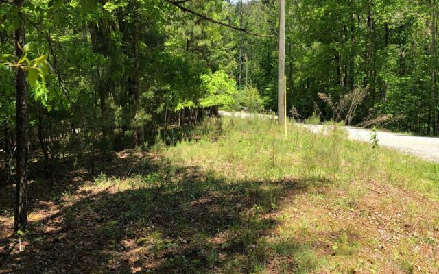 Greely Dr, Ellijay, GA 30540 (MLS #277801) :: RE/MAX Town & Country