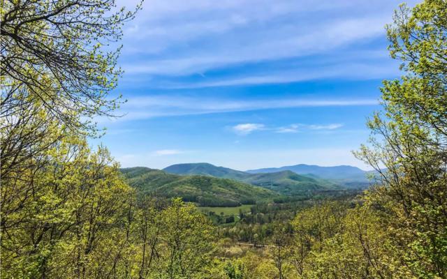 LT 27 Enchanting Forest, Morganton, GA 30560 (MLS #277802) :: RE/MAX Town & Country