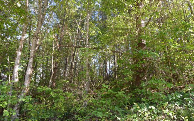 LT 4 Bristol Ridge, Hayesville, NC 28904 (MLS #277841) :: RE/MAX Town & Country
