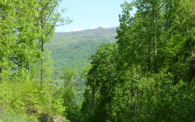 LT 30 Hidden River, Hayesville, NC 28904 (MLS #277924) :: RE/MAX Town & Country