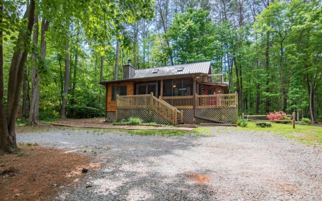 94 Wilderness Trail, Blue Ridge, GA 30513 (MLS #277934) :: RE/MAX Town & Country