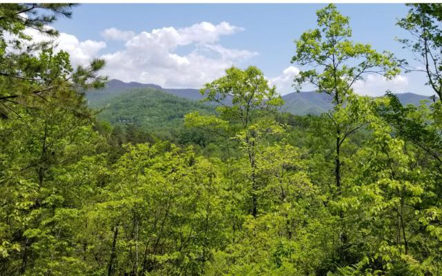 LT 10 Eagle Fork Overlook, Hayesville, NC 28904 (MLS #277941) :: RE/MAX Town & Country