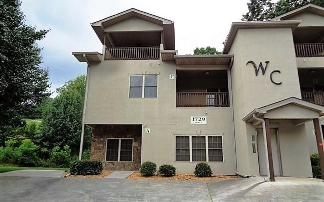 1729C Watercrest Way, Hiawassee, GA 30546 (MLS #278009) :: RE/MAX Town & Country