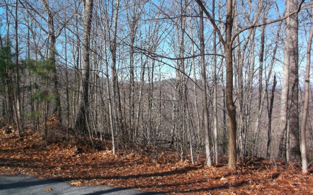 LOT38 Laurel Brooke, Blairsville, GA 30512 (MLS #278062) :: RE/MAX Town & Country