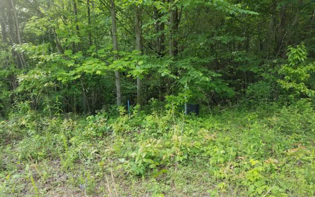 LT 2 Quail Ridge, Blue Ridge, GA 30513 (MLS #278184) :: RE/MAX Town & Country