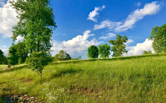 LOT45 Riverside On Lake No, Blairsville, GA 30512 (MLS #278188) :: RE/MAX Town & Country