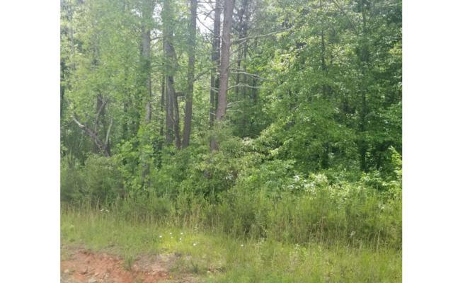 86 Owen Glen Dr, Blairsville, GA 30512 (MLS #278199) :: RE/MAX Town & Country