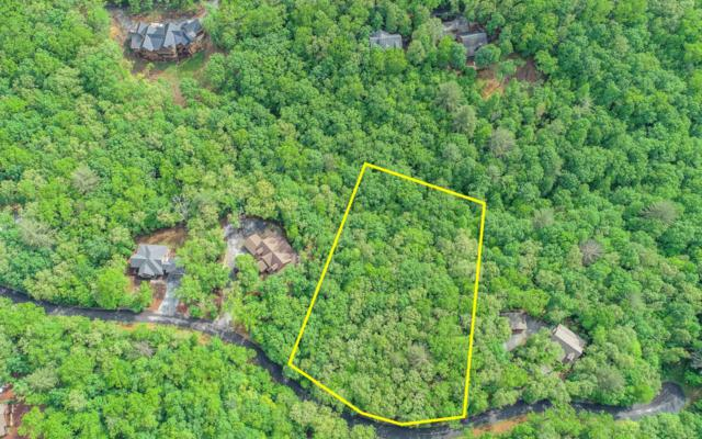 LT 80 Cold Water Creek Dr, Mineral Bluff, GA 30559 (MLS #278213) :: RE/MAX Town & Country