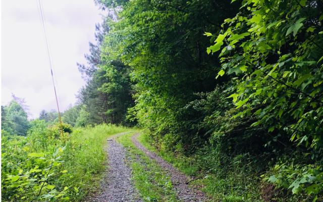 Mount Liberty Road, Blue Ridge, GA 30513 (MLS #278246) :: RE/MAX Town & Country