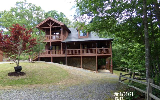 320 Indian Lake Rd, Mineral Bluff, GA 30559 (MLS #278248) :: RE/MAX Town & Country