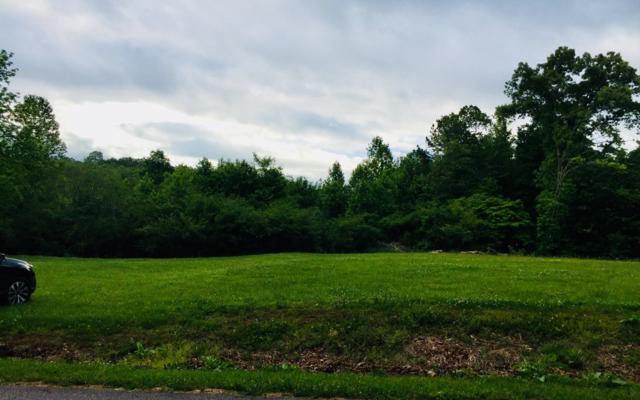 Barnes Chapel Road, Blue Ridge, GA 30513 (MLS #278251) :: RE/MAX Town & Country