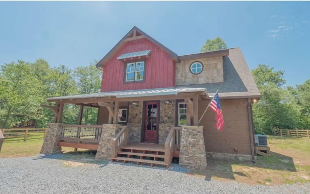 789 Bell Road, Mineral Bluff, GA 30559 (MLS #278256) :: RE/MAX Town & Country