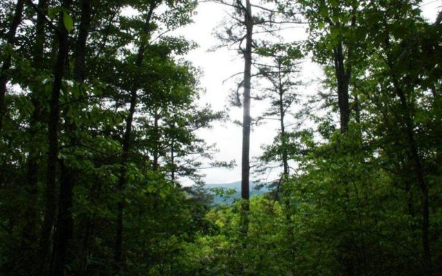L 401 Little Hiawatha Tr, Blue Ridge, GA 30513 (MLS #278313) :: RE/MAX Town & Country