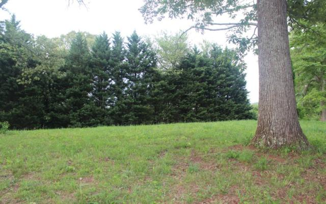 LOT 6 Meadows At Chatuge, Hayesville, NC 28904 (MLS #278531) :: RE/MAX Town & Country