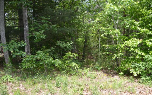 Maple Springs Lot 11, Blairsville, GA 30512 (MLS #278556) :: RE/MAX Town & Country
