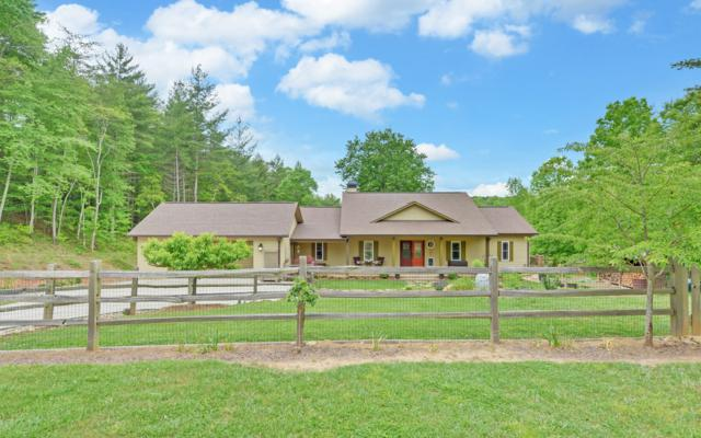 87 Dillons Ridge Road, Morganton, GA 30560 (MLS #278657) :: RE/MAX Town & Country