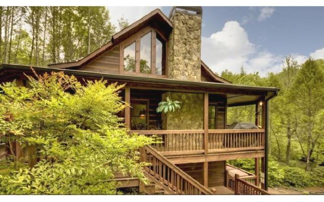 823 Old Silver Mine Road, Mc Caysville, GA 30555 (MLS #278662) :: RE/MAX Town & Country