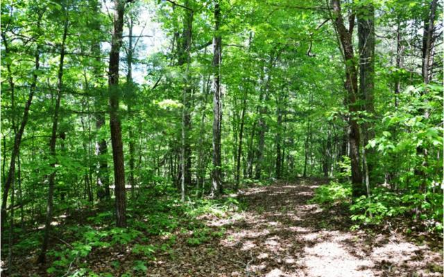 LOT 5 Bear Mountain Pass, Mineral Bluff, GA 30559 (MLS #278666) :: RE/MAX Town & Country