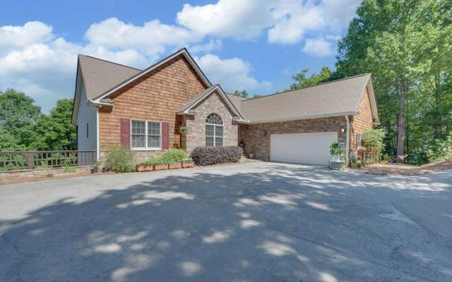 883 Ramey Mountain Road, Hiawassee, GA 30546 (MLS #278681) :: RE/MAX Town & Country