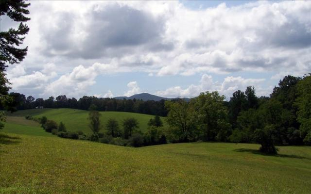 6.89A Fox Fields (3 Lots), Blairsville, GA 30512 (MLS #278685) :: RE/MAX Town & Country