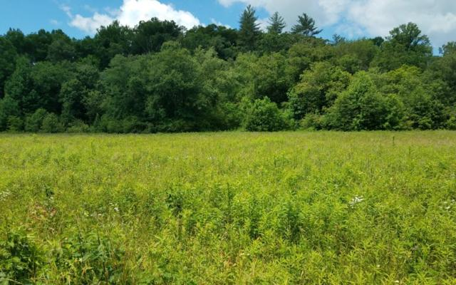 7-7A Pauls Meadow, Hayesville, NC 28904 (MLS #278698) :: RE/MAX Town & Country