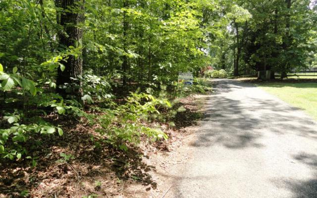 TR 1 Crystal Lane, Hiawassee, GA 30546 (MLS #278699) :: RE/MAX Town & Country