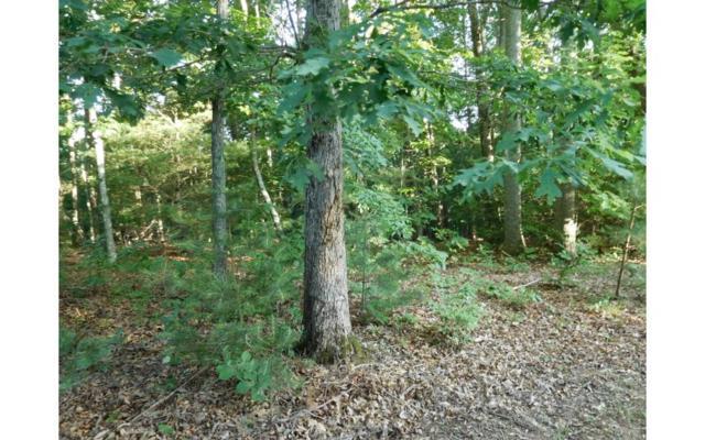 LT 5 Mount Pleasant Ridge, Blairsville, GA 30512 (MLS #278711) :: RE/MAX Town & Country