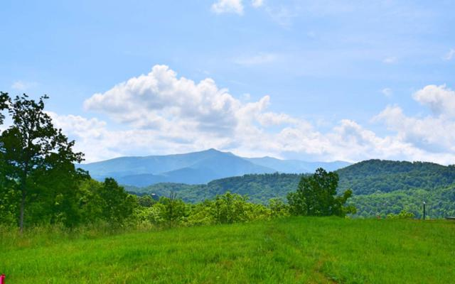 LOT10 Ivy Log Heights, Young Harris, GA 30582 (MLS #278749) :: RE/MAX Town & Country
