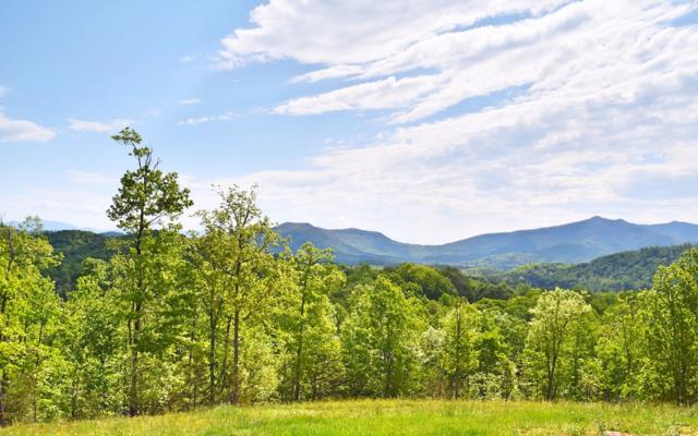 LOT11 Ivy Log Heights, Young Harris, GA 30582 (MLS #278750) :: RE/MAX Town & Country