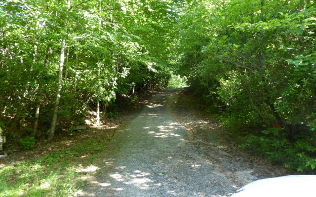 TR 1 Hothouse Ext, Hayesville, NC 28904 (MLS #278845) :: RE/MAX Town & Country