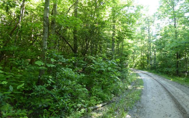 TR 4 Hot House Ext, Hayesville, NC 28904 (MLS #278846) :: RE/MAX Town & Country