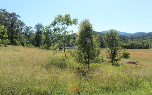 LT 1 Village View, Young Harris, GA 30582 (MLS #278868) :: Path & Post Real Estate