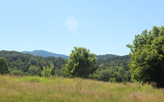 LT 3 Village View, Young Harris, GA 30582 (MLS #278870) :: Path & Post Real Estate