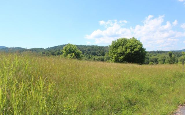 LT 6 Village View, Young Harris, GA 30582 (MLS #278873) :: Path & Post Real Estate