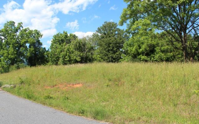 LT 7 Village View, Young Harris, GA 30582 (MLS #278874) :: Path & Post Real Estate