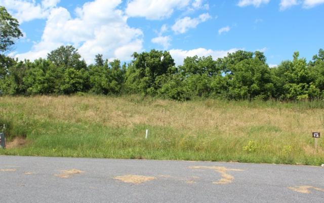 LT 13 Village View, Young Harris, GA 30582 (MLS #278880) :: Path & Post Real Estate