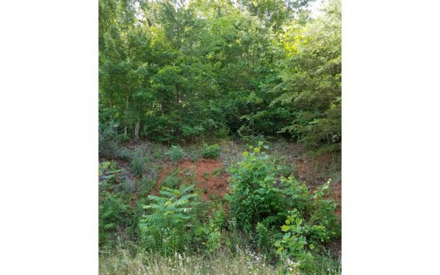 Lot 14 Shallow Creek, Hiawassee, GA 30546 (MLS #278885) :: RE/MAX Town & Country