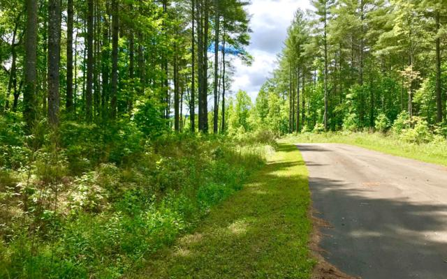 LT63 Pleasant Meadows, Blairsville, GA 30512 (MLS #278909) :: Path & Post Real Estate