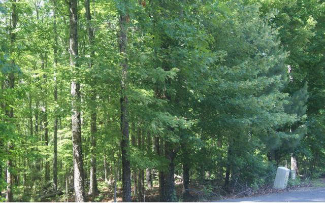 LOT 4 Greenwood Rd, Mineral Bluff, GA 30559 (MLS #278926) :: RE/MAX Town & Country