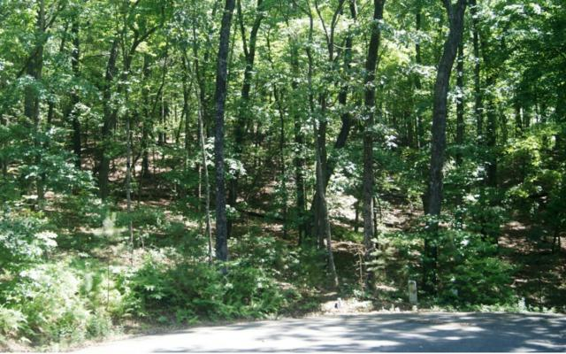 LOT 9 Heritage Dr, Mineral Bluff, GA 30559 (MLS #278927) :: RE/MAX Town & Country