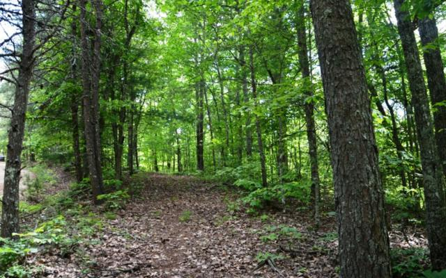 LOT 4 Bear Mountain Pass, Mineral Bluff, GA 30559 (MLS #278930) :: RE/MAX Town & Country