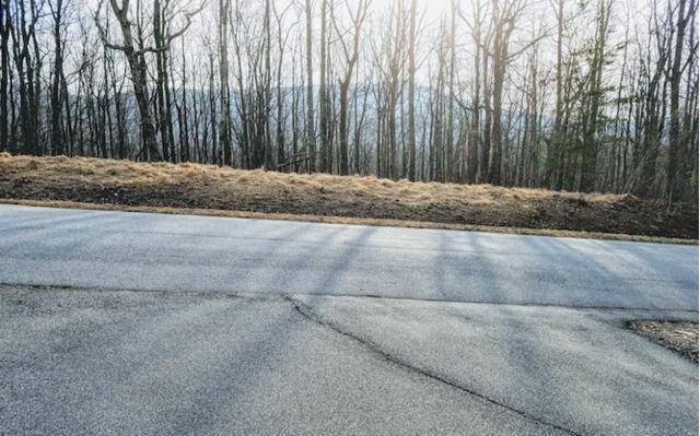 106 Cloudland Drive, Ellijay, GA 30536 (MLS #279012) :: RE/MAX Town & Country
