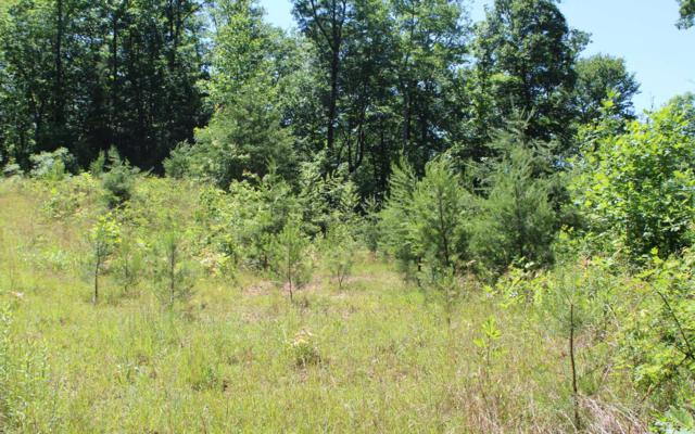 LT 80 Shiloh Stables, Hayesville, NC 28904 (MLS #279036) :: RE/MAX Town & Country
