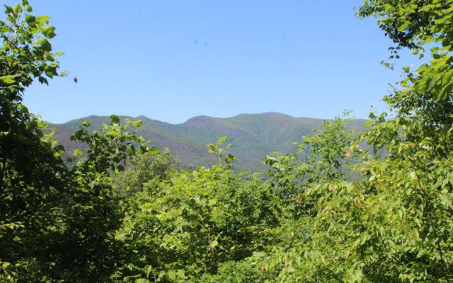 LT 92 Shiloh Stables, Hayesville, NC 28904 (MLS #279037) :: RE/MAX Town & Country