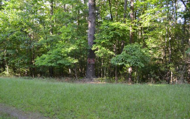 LOT 3 Mountain View Dr, Suches, GA 30572 (MLS #279060) :: RE/MAX Town & Country