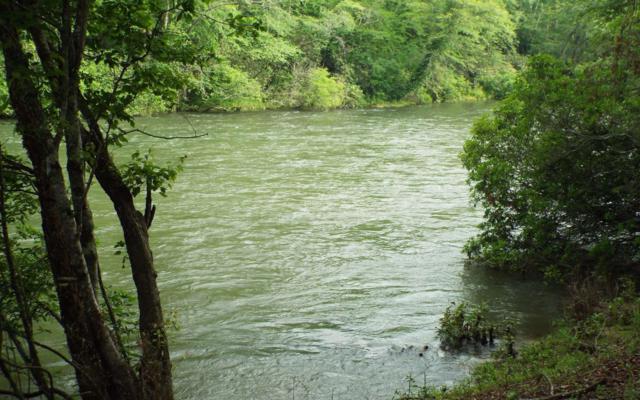 LT 4 Toccoa Riverbend, Blue Ridge, GA 30513 (MLS #279100) :: RE/MAX Town & Country